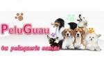 Peluquería Mascotas PeluGuau en Málaga